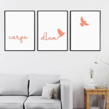Pack de 3 láminas decorativas - Carpe Diem