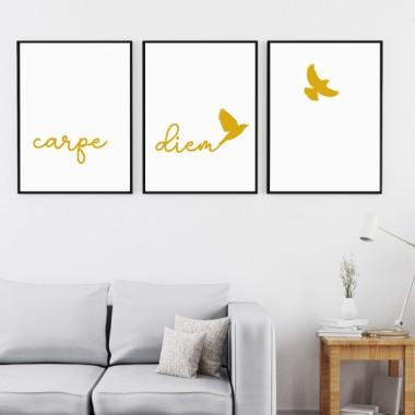 Pack de 3 láminas decorativas - Carpe Diem Cuadros hogar Carpe Diem.Láminas de diseño para decorar paredes, muebles, cabezales de cama… Elige tamaño y color, y cambia de manera fácil y rápida el estilo de tu hogar. Productos de gran calidad para decorar de manera elegante y personalizada cualquier pared de tu casa. Medidas (ancho x alto) A4 - 210 x 297 mm A3 - 297 x 420 mm A2 - 420 x 594 mm  Material: Impresión sobre canvas Marco: Opcional vinilos infantiles y bebé Starstick