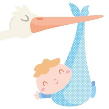 Benvingut nadó - Vinils infantils Vinils nadó Vinil infantil amb una mare cigonya portant un adorable nadó. Un vinil ideal per decorar habitacions de nadons.  Mides aproximades del vinil enganxat (ample x alt) Petit:80x60 cm Mitjà:110x80 cm Gran:230x130 cm   AFEGEIX UN NOM AL VINIL DES DE 9,99 €  vinilos infantiles y bebé Starstick